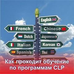 Как проходит обучение иностранному языку
